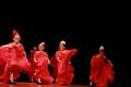 Flamenco Preballet